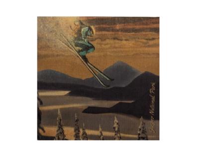 Coaster - Freestyle Skier