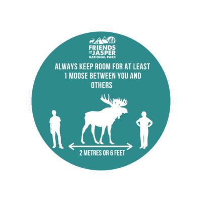 Room for Moose Sticker
