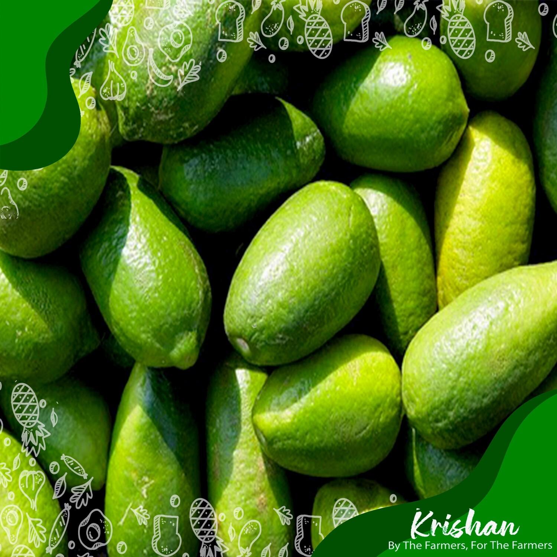লেবু (Lemon)