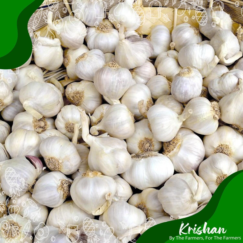 দেশী রসুন (Garlic Local)