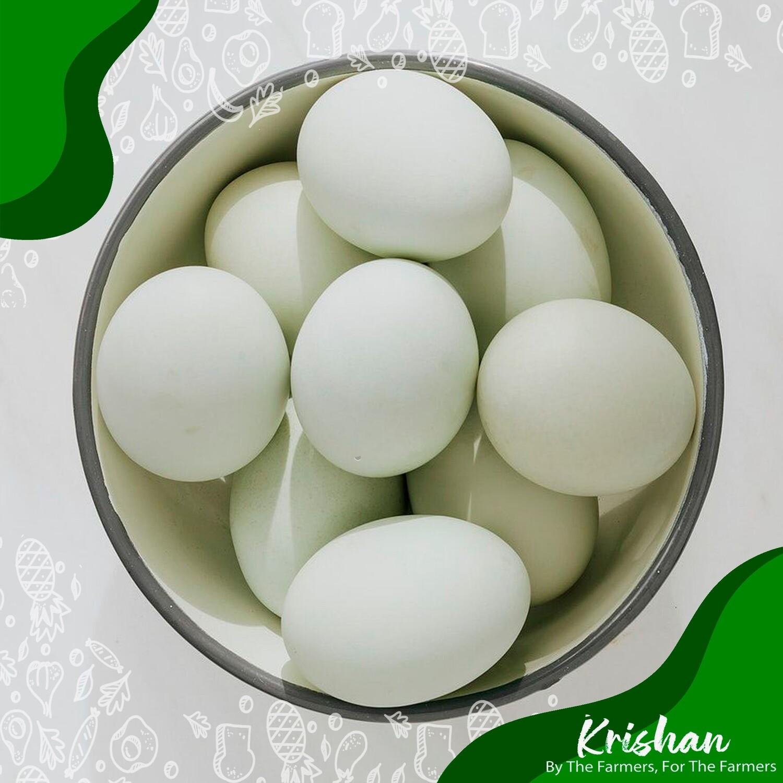 হাঁসের ডিম (Duck Egg)