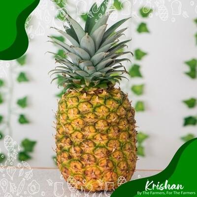 আনারস (Pineapple)