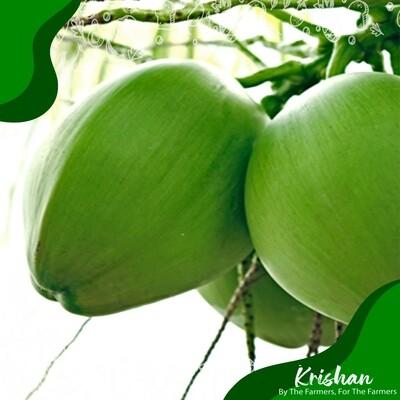 ডাব (Green Coconut)