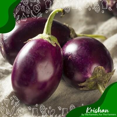 গোল বেগুন (round brinjal/eggplant)