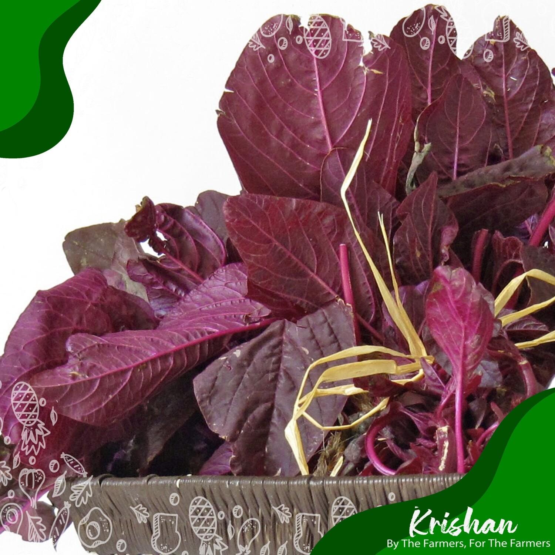 লাল শাক (red spinach)