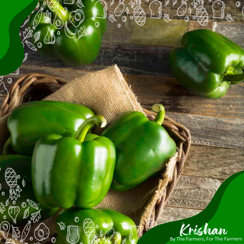 সবুজ ক্যাপসিকাম (Green Capsicum) (250 gm)