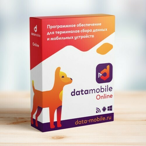 ПО DataMobile, версия Online