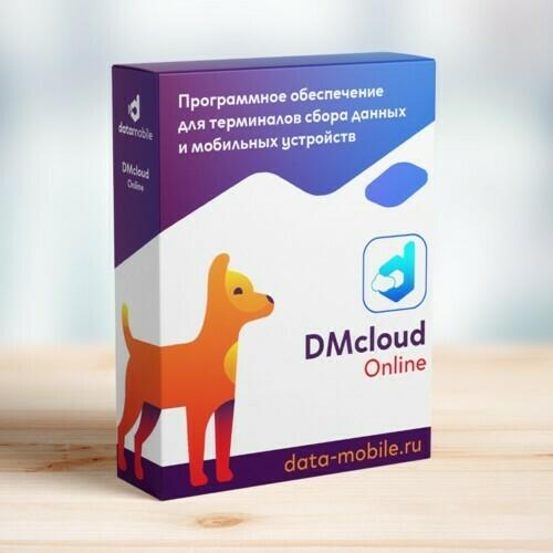 DMcloud: ПО DataMobile, версия Online -  подписка на 12 месяцев