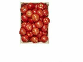tomates 1Kg