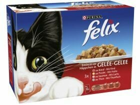 Felix chat en gelée divers types 12x100g