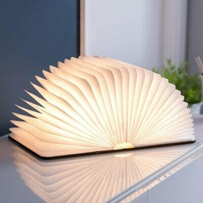 Le livre lumineux original