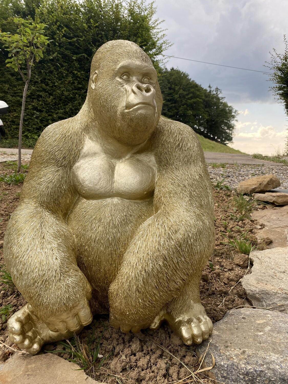 Le gorille qui s'appelait zoom-zoom