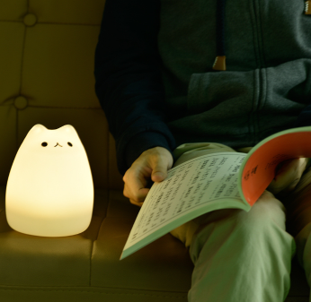 Petite lampe led chat