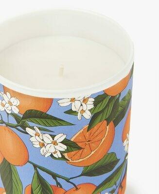 Bougie Orange blossom