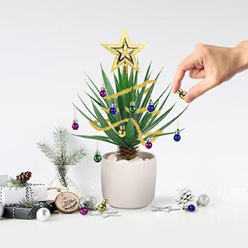 Boules de Noël pour vos plantes vertes