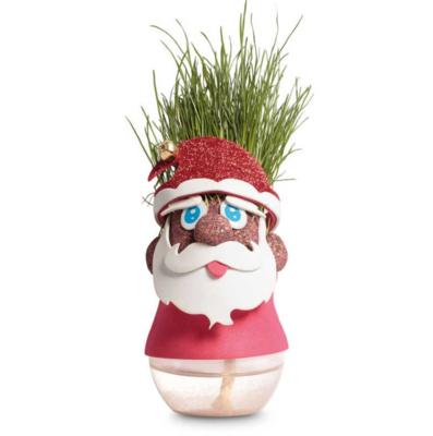 Faites pousser des cheveux au Père-Noël