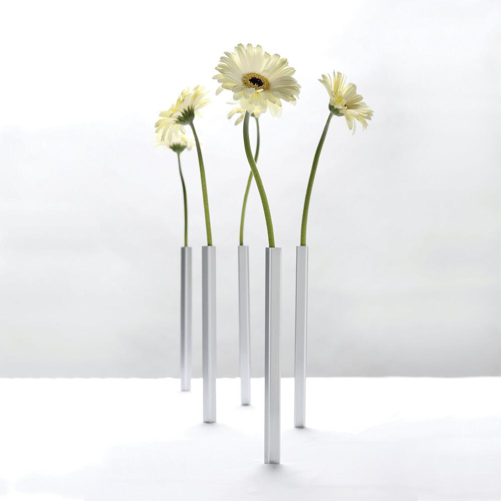 Les vases magique ♥️