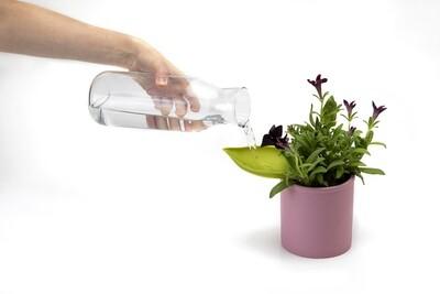 La feuille qui vous aide a arroser vos plantes