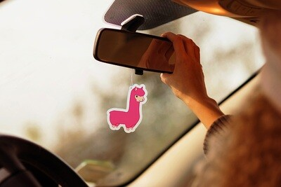 Sent bon pour voiture en forme de Lama