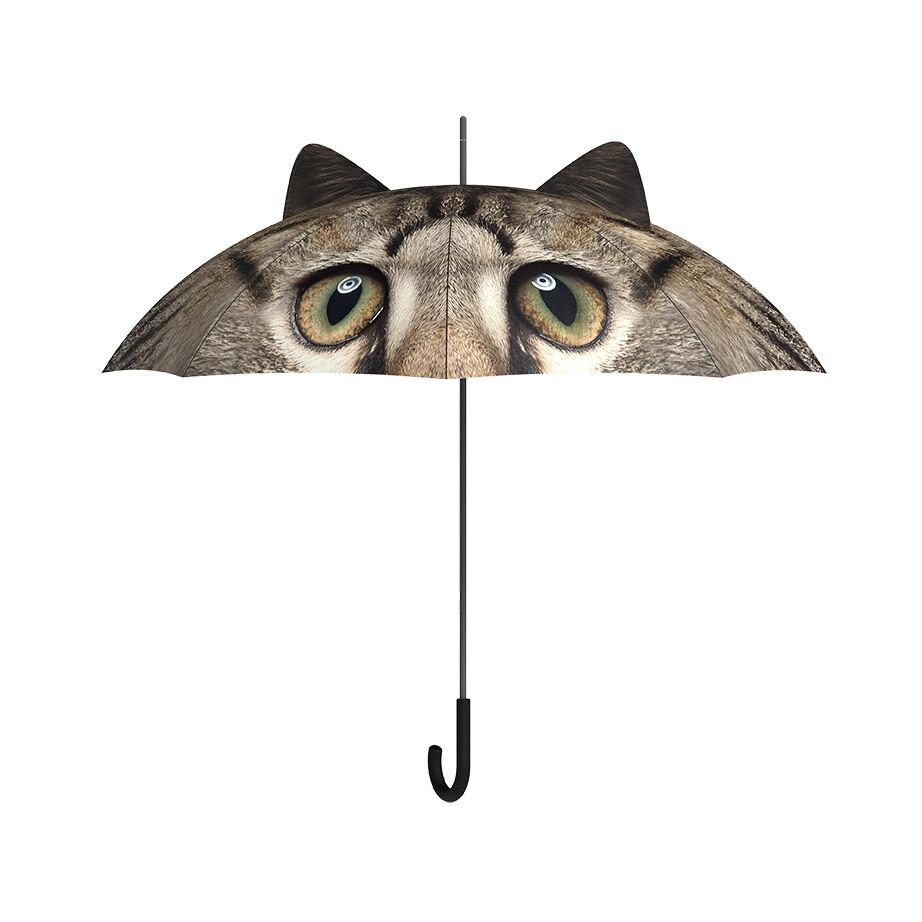 Beau parapluie Chat ♥️