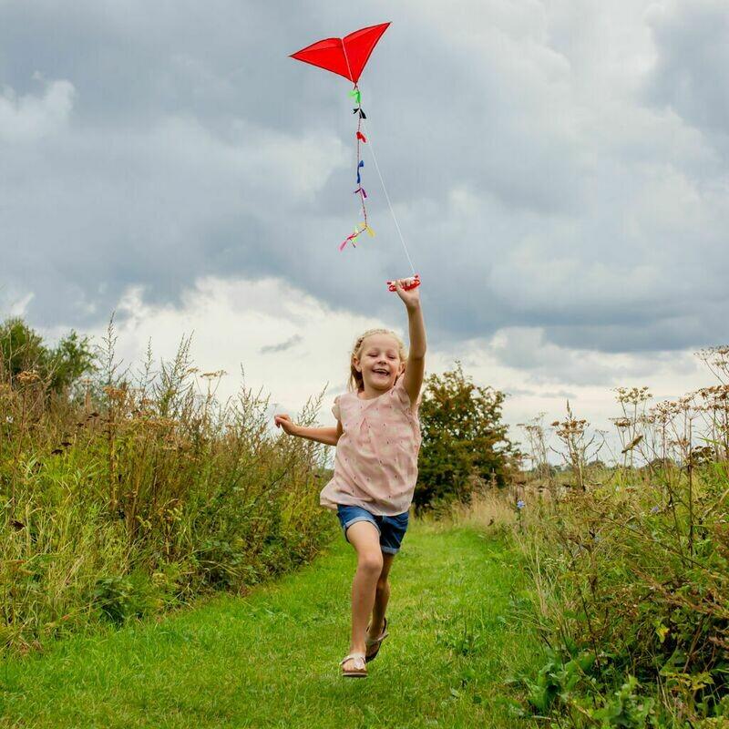 Le cerf-volant de notre enfance