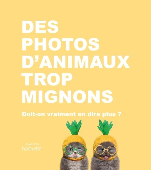 Beau livre - Des photos d'animaux trop mignons