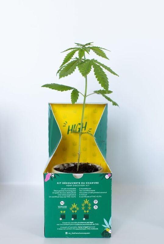 Kit de plantation de chanvre CBO - Marie-Janine