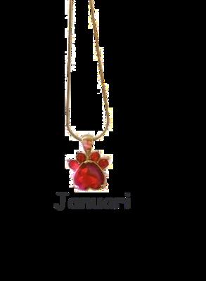 Halsband med månadssten - Januari