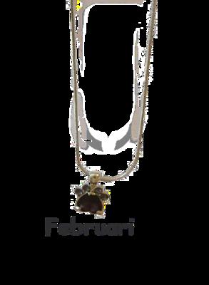 Halsband med månadssten - Februari