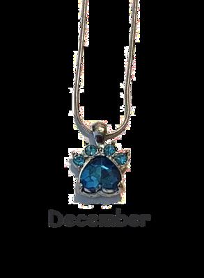 Halsband med månadssten - December