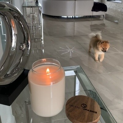 Anonymous Candle Collection - Vanilla Tinder