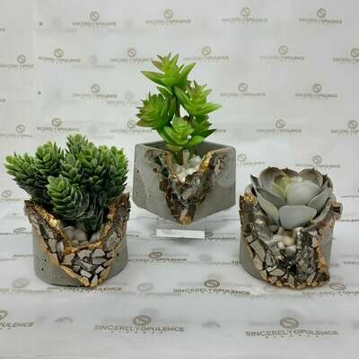 Minimalist 3pc Planter Set