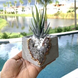 Crystalline Planter (Square Clear)