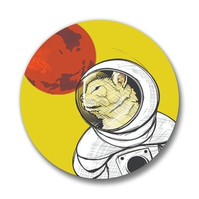 Curiosity Cat Pin