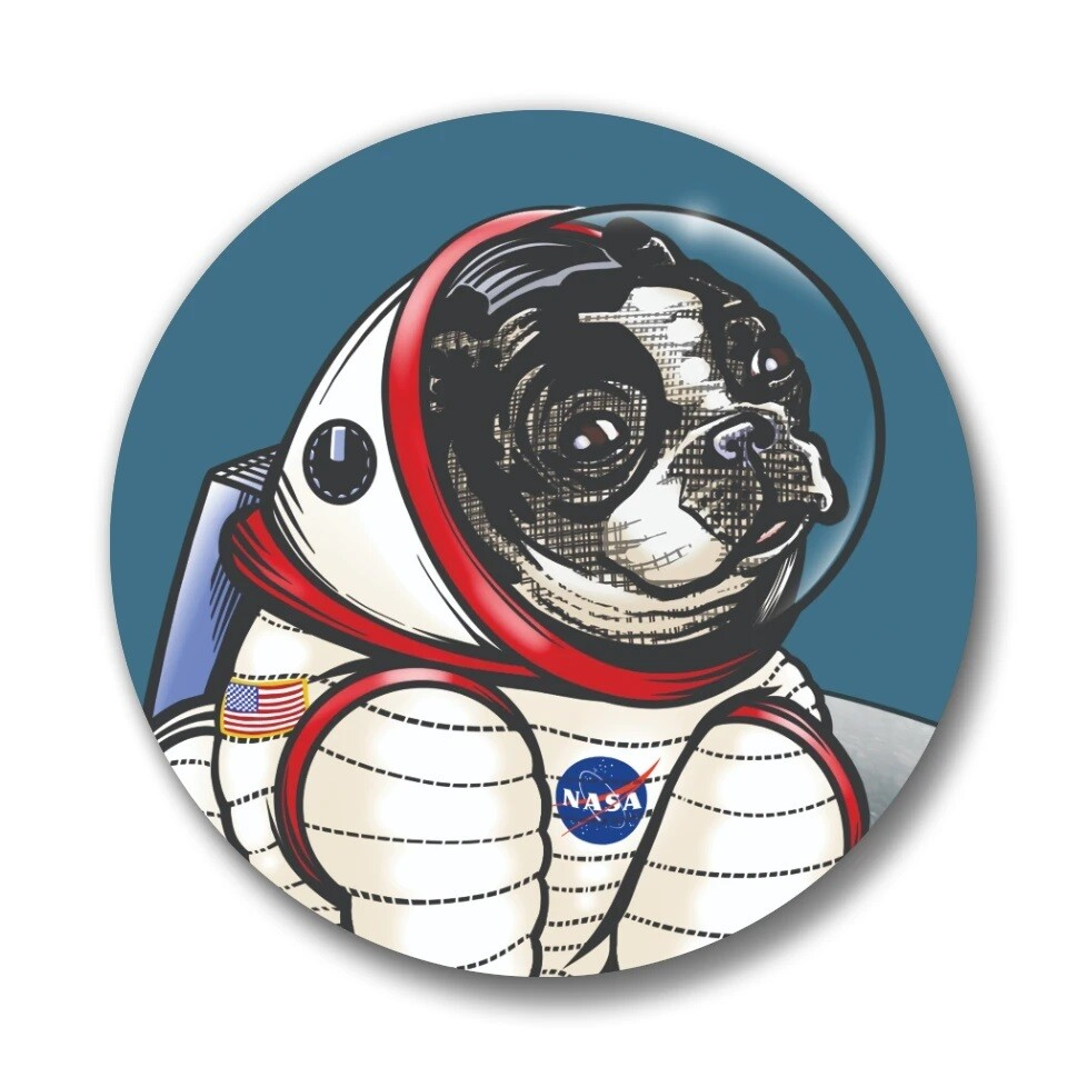 Rover The Space Dog Pin