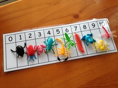 Mini Insect Counting