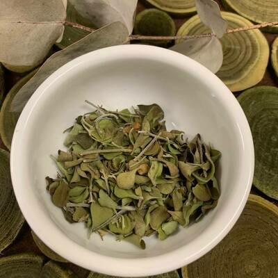 Native Oregano (round leaf mint)