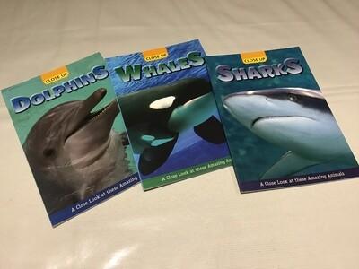 Underwater Animals Set of 3