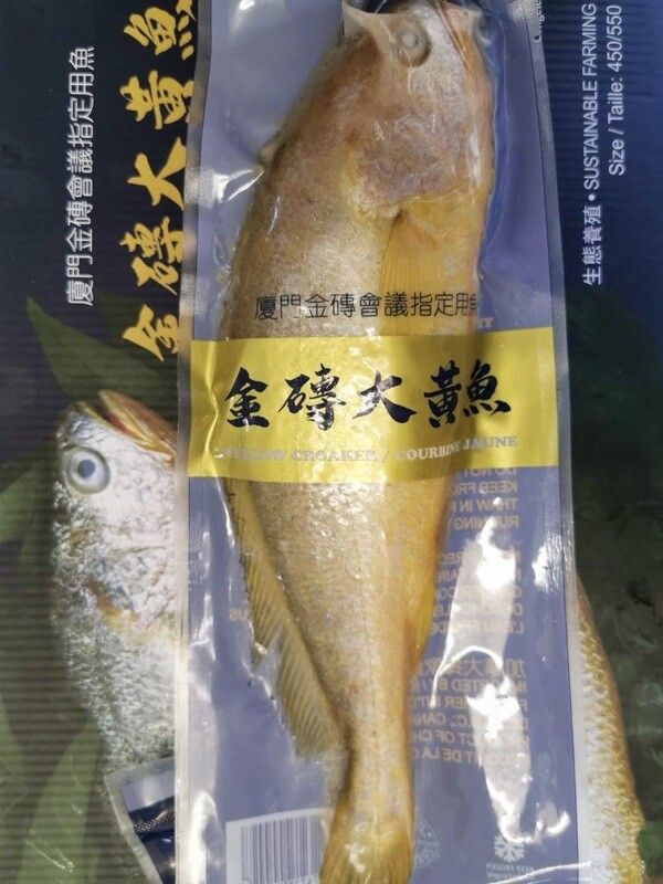 Yellow Croaker Fish 1pc / 金砖大黄花鱼 1条
