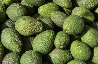 Avocado x 2