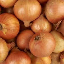 Onions Loose Brown  x5