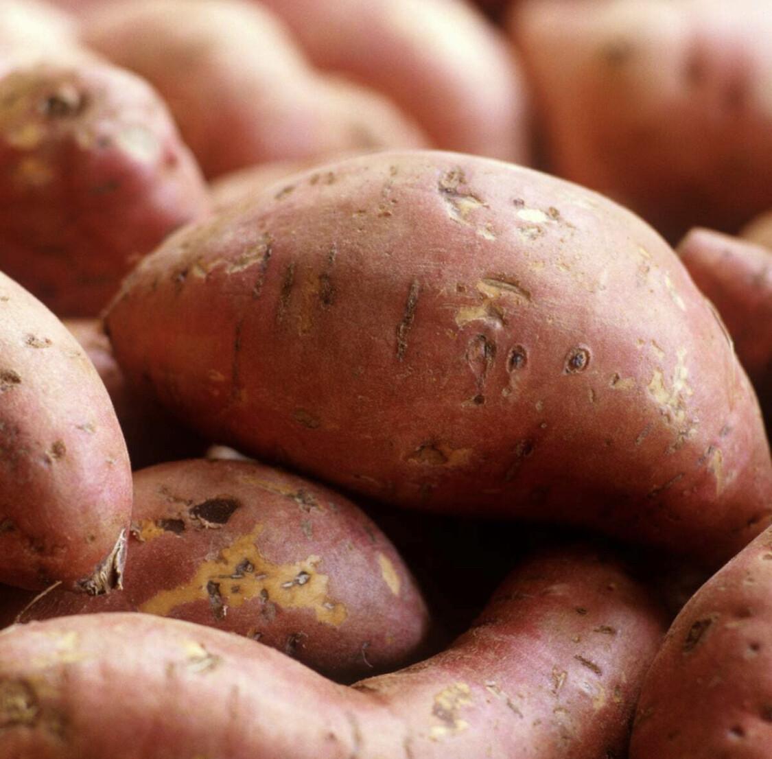 Sweet Potato 2.5kg