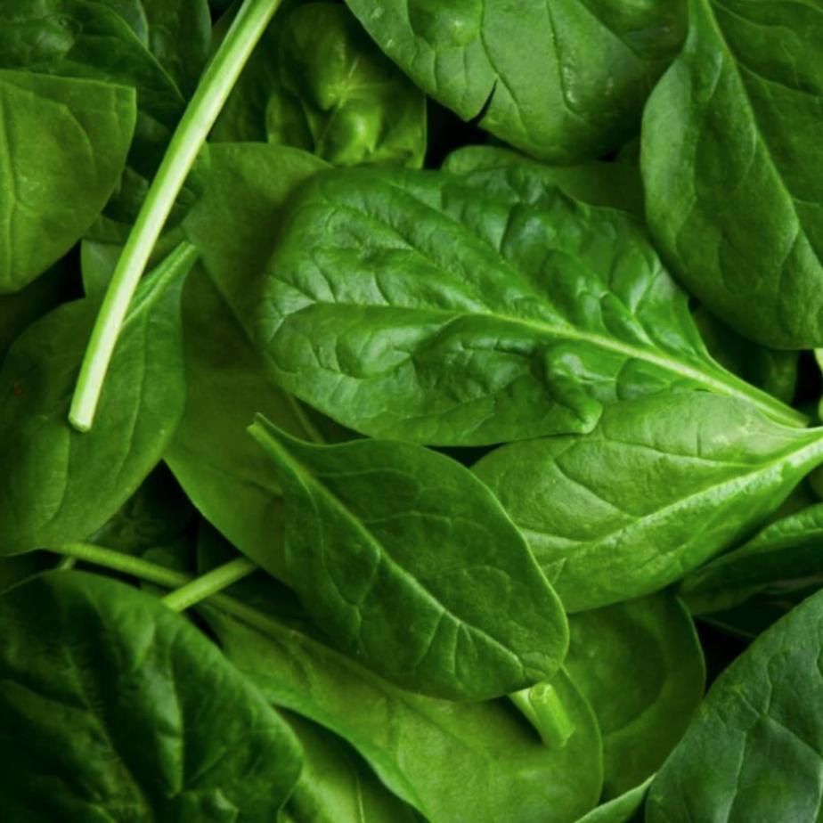 Baby Leaf Spinach 200g