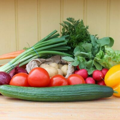 Large Salad Box
