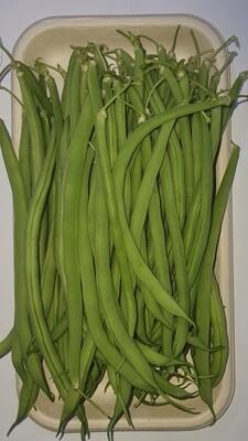 Haricots extra fins sans fil ZERO pesticide(250g)