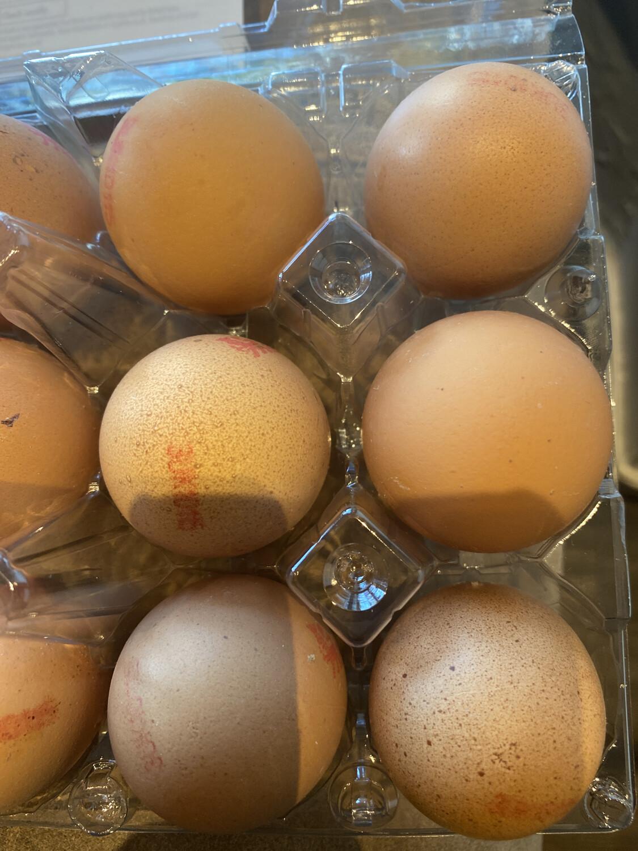 Fresh Eggs (Medium. 6 Pack)