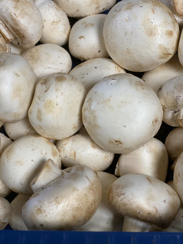 Mushrooms Close Cup 250g Pack