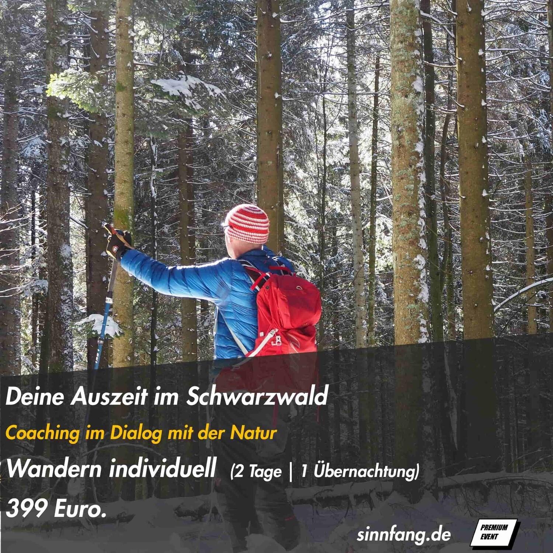 Wandern im Schwarzwald (2 Tage)