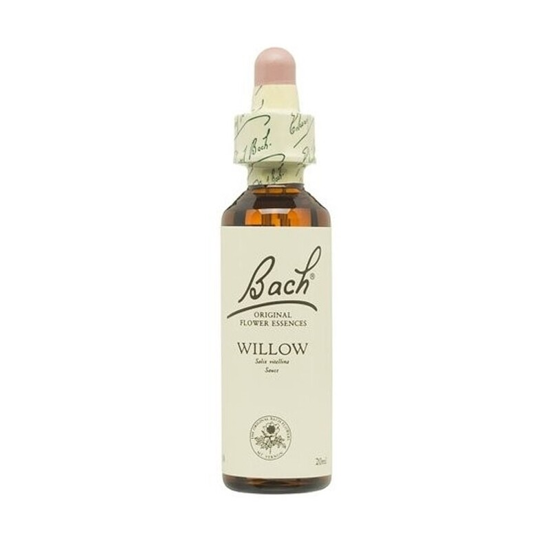 BACH 38 WILLOW 20ML