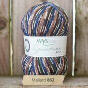 WYS 4ply - Mallard